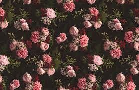 Pink & Black Dark Moody Floral Pattern ...