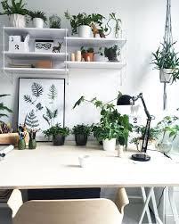 cubicle office decor. CUBICLE DECOR IDEAS Cubicle Office Decor T