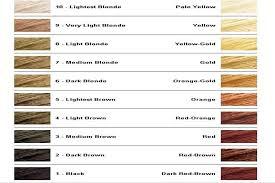 Hair Bleach Level Chart Hair Bleach Shade Chart Bedowntowndaytona Com