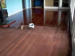 deep clean hardwood floors. Gallery Of Indianapolis In Hardwood Floor Refinishing Wire Brushing Wood How To Deep Clean Floors Modern House