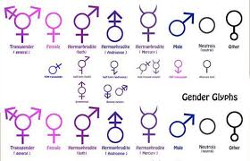 Gender Symbols Chart Pin On Gender Symbols