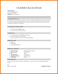 Ways To Write A Cv Professional Resume Templates