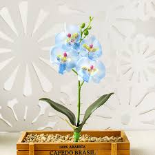 Best Price High quality orchid <b>bouquet</b> white wedding ideas and get ...
