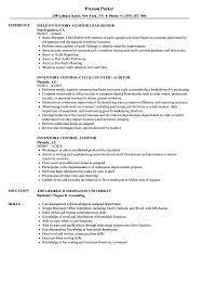 Inventory Auditor Resume Samples Velvet Jobs