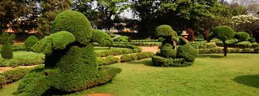 hyderabad botanical gardens entry fee timings entry ticket cost