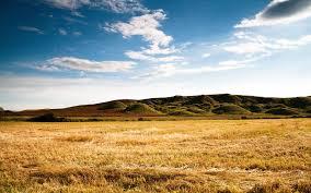 dry grass field background. Dry Grass Field Landscape Photo And Desktop Wallpaper Background R