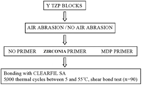 Bonding Comparison Chart Effects Of Mdp Based Primers On Shear Bond Strength Between