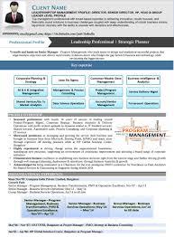 Free Resume Samples Cv Template Download Sample It Leadership V