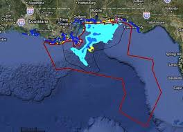 case study bp oil spill the ongoing effects