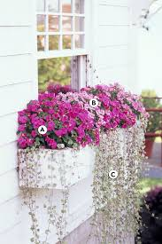 Find & download free graphic resources for flower bunch. 16 Easy Shade Window Box Ideas Better Homes Gardens