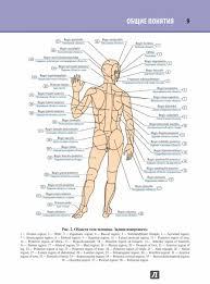 анатомия атлас на латинском