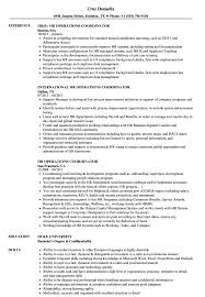 Hr Coordinator Resume Sample HR Operations Coordinator Resume Samples Velvet Jobs 17