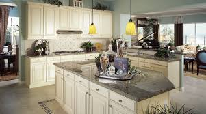 Garden Kitchen Houston Pleasing Kitchen Cabinets Houston Throughout Kitchen Cabinets To