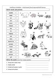furthermore Ocean Animals Worksheets likewise Ocean animal worksheet for kids   Crafts and Worksheets for as well Kindergarten Printable Worksheets   MyTeachingStation also 76 FREE ESL sea animals worksheets also Summer Preschool Worksheets   Planning Playtime as well  as well Oceans and Seas at EnchantedLearning as well 81 FREE ESL wild animals worksheets further  together with . on kindergarten animals worksheets water