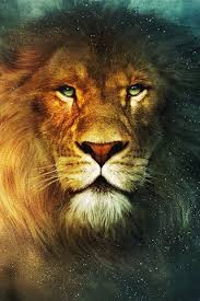 aslan the chronicles of narnia wiki fandom powered by wikia aslan