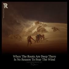 When The Roots Are Deep There Is No Reason To Fear The Wind Quotes