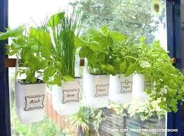 kitchen window herb garden hanging milk jugs used as a bottle designs bay garde