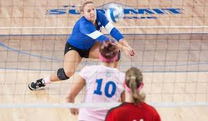 Tessa McGill - 2012 - Women's Volleyball - Purdue Fort Wayne Athletics