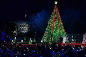 Christmas Lights In Elmira Ny Bathroom Stunning Christmas Tree House Christmas Tree
