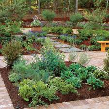 Small Picture Garden Design Garden Design with How to Plant out a Herb Garden