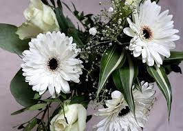 Composizione in spugna, con fiori bianchi, semplice e delicata, un piccolo per pensiero, per poter essere vicini ad una persona cara, nel momento del bisogno. Fiori Bianchi I 10 Piu Eleganti Per Abbellire Casa E Giardino