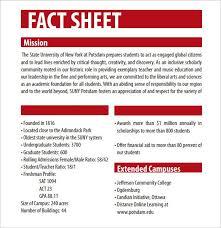 Company Fact Sheet Sample Fact Sheet Template Free Rome Fontanacountryinn Com