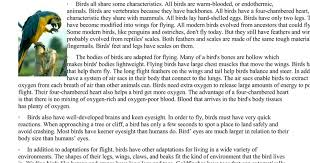 Bird adaptation worksheet.doc - Google Docs