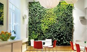 plants for office space. fine office green plants wall office space to plants for office space t