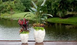 pot fillers to use in large planters