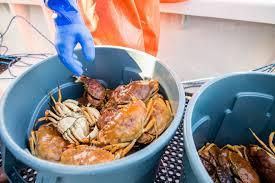 San Diego Seafood ...