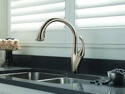 Delta Kitchen Faucet Leaking Faucet Delta Kitchen Faucet Leak