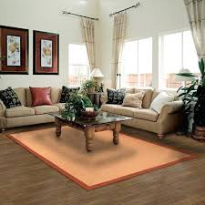 cleaning area rugs with carpet cleaner best area rug cleaner inspirational best top rated carpet cleaners