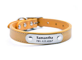 carmellicious customized leather nameplate dog collars