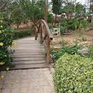 imagem de Belo Jardim Pernambuco n-13
