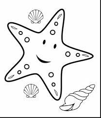 amazing starfish coloring page | alphabrainsz.net