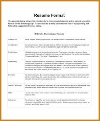 most attractive resume format chronological resume format most attractive  resume