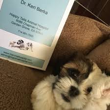 garden grove pet hospital. Photo Of Happy Tails Animal Hospital - Garden Grove, CA, United States. Grove Pet O