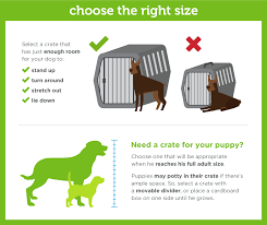 Dog Crate Size Chart Complete Guide To Dog Crate Size Paw Castle