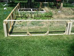 chicken wire fence ideas. Chicken Wire Fence For Vegetable Garden Ideas  Decorating Clear Build