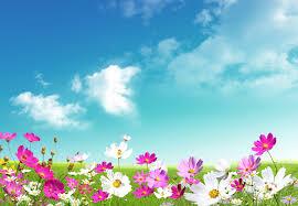 spring landscape desktop wallpapers