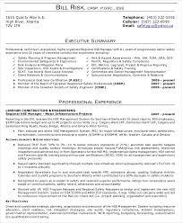 Executive Summary Resume Examples Unique Executive Summary Resume Examples Luxury For Example