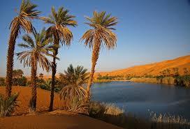Image result for padang pasir