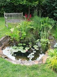 how to build a low maintenance garden pond in 7 steps