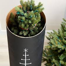 Store your artificial Christmas tree in a dust-free container you can  assemble in minutes