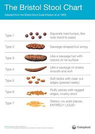 Stool Movement Chart Bristol Stool Chart What Does Poo And Bowels Say About Health