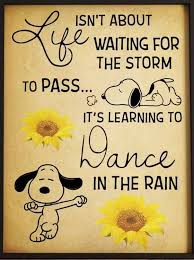 Pin by Kristin Forester on Snoopy and Woodstock | Snoopy quotes, Snoopy  funny, Snoopy images