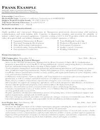 Government Resume Templates Gorgeous Government Resume Templates Federal Resume Templates Free Government