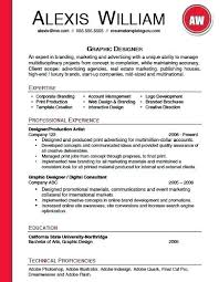 Microsoft Word Professional Resume Template – Armni.co