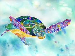 Small Picture Best 20 Sea turtle images ideas on Pinterest Sea turtle