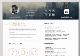 Resume Template for Self-Promotion (+Icons) by Tolgahan Yurtseven